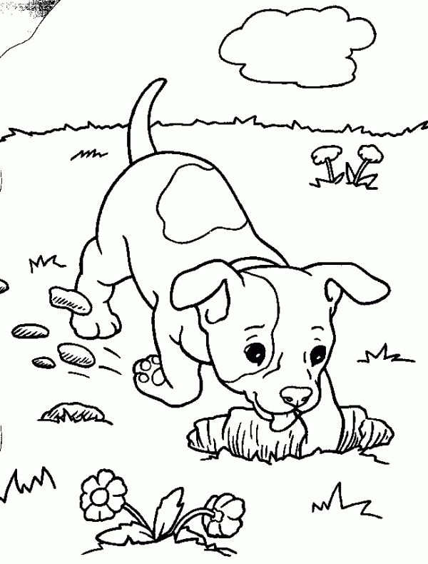 google coloring pages animals - photo#6
