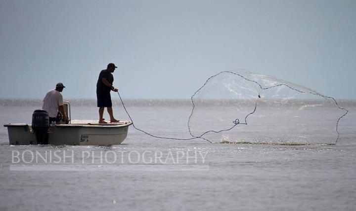 Cast net fishing on the flats in cedar key florida cedar for Cedar key fishing