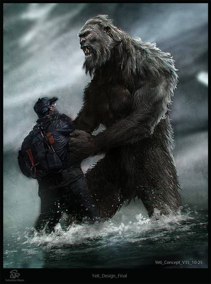 Bigfoot | Bigfoot/BHM/Creatures | Pinterest | Photos and ...