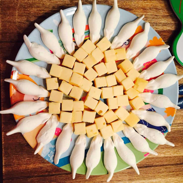 Blokjes kaas en snoepmuizen met de neusjes naar de kaas gericht en klaar traktatie