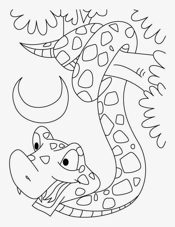 31 best images about Dkidspage Coloring Pages on Pinterest ...