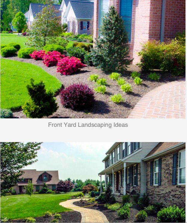Front yard landscape home decor pinterest for Front yard landscaping plants