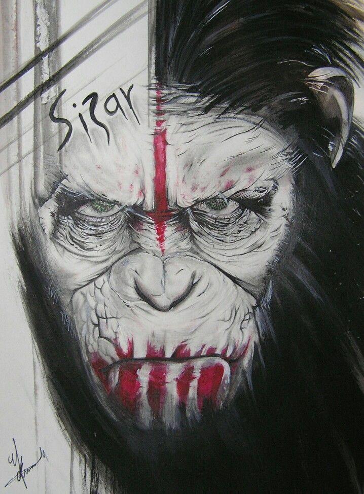 Sizar
