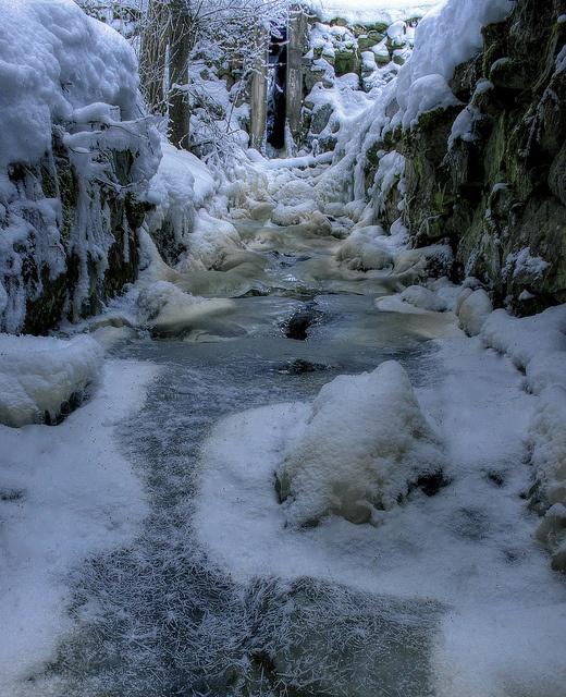 Frozen movement (Tyresta national park)(Explore) by Robban.G, via Flickr