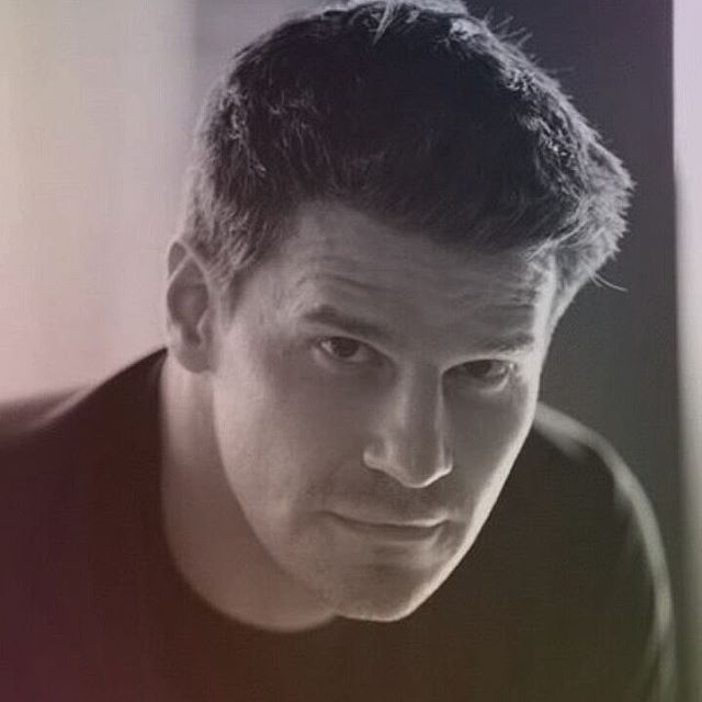 "37 Likes, 4 Comments - Barbara (@manb14) on Instagram: ""#DavidBoreanaz #Bones #Buffy"""