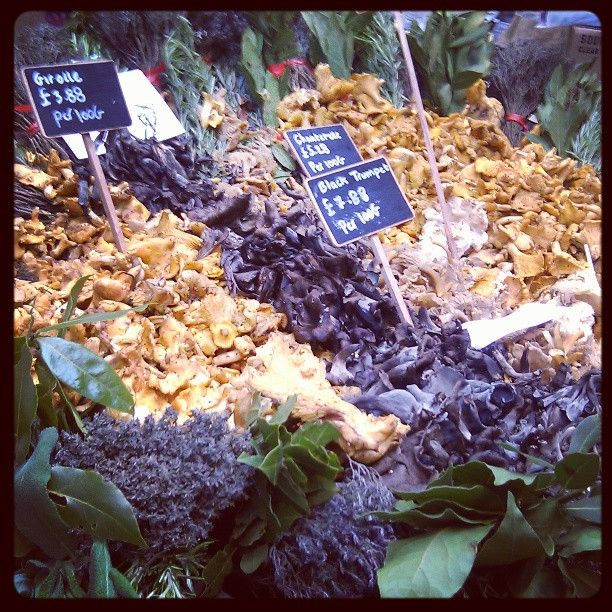 Wild mushroom festa @ Borough Market.1st course sorted #filthygoodfood #lateral