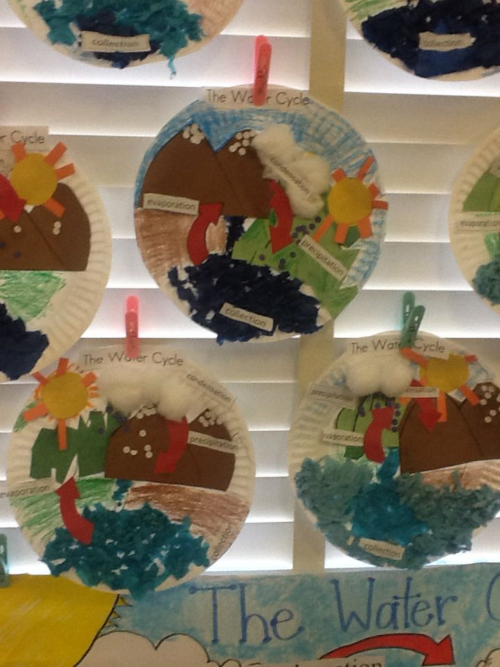 Water Cycle Projects