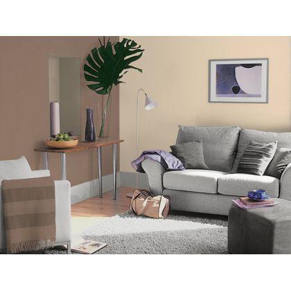 Dulux feature wall intense truffle matt emulsion paint dulux feature wall feature for Feature wall colours for living room