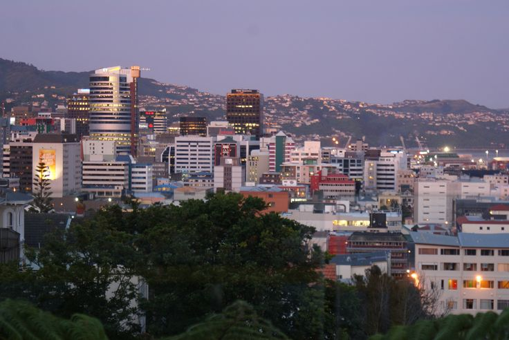 View of #Wellington City from Brooklyn