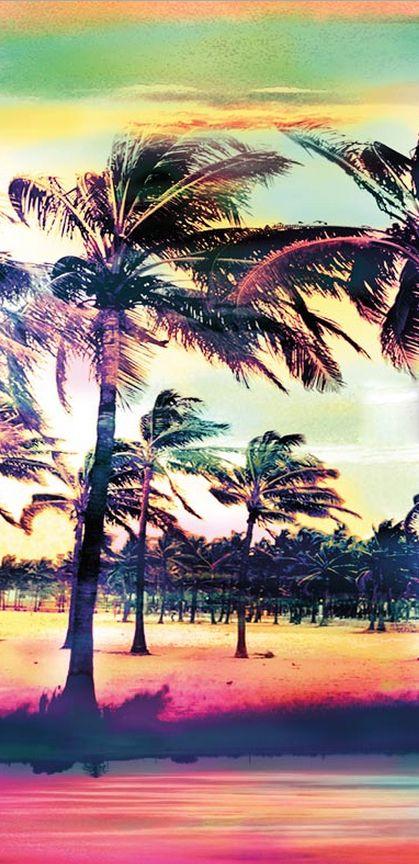 Fond d'écran vent et palmiers iphone