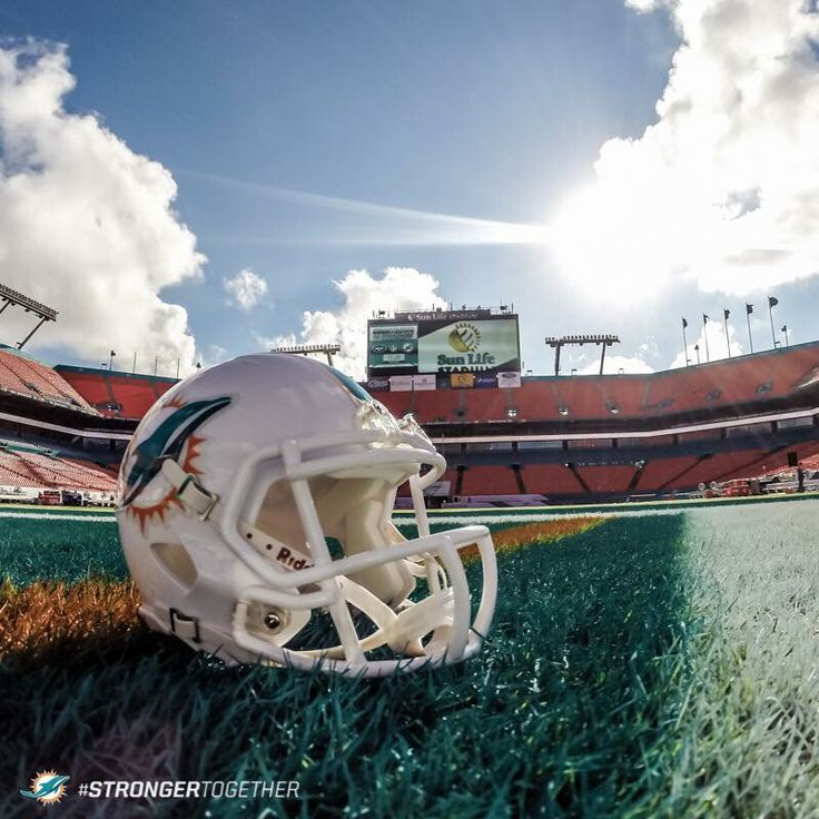 We are The Miami Dolphins  #strongertogether