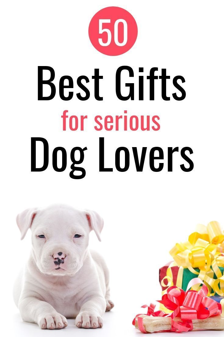 Pin On Gift Ideas For Dog Lovers