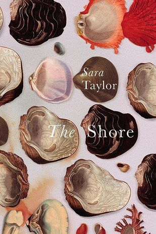 The Shore by Sara Taylor | 20 Incredible Books From The Past Year You Need To Read Right Now
