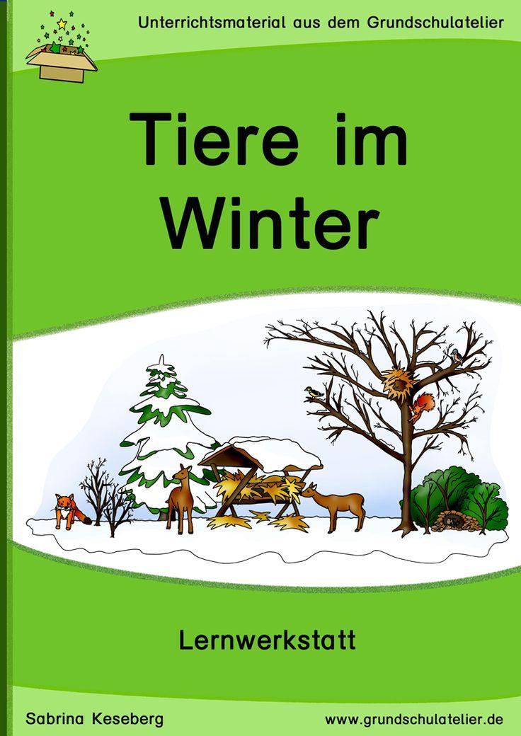 Unterrichtsmaterialien für den Sachunterricht (2-fach differenziert): Arbeitsblätter und Lernspiele zum Thema Tiere im Winter (Überwinterung von Tieren) 167 Seiten, pdf-Format, Klassen 2-3