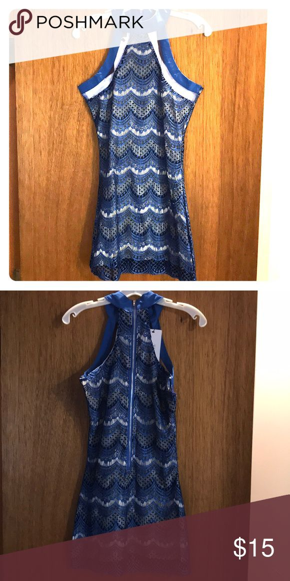 Royal Blue Night Out Dress ! Never Worm ! Royal blue and black lace with a white under-lay. Above the knee . Size Small petite . Dresses Mini