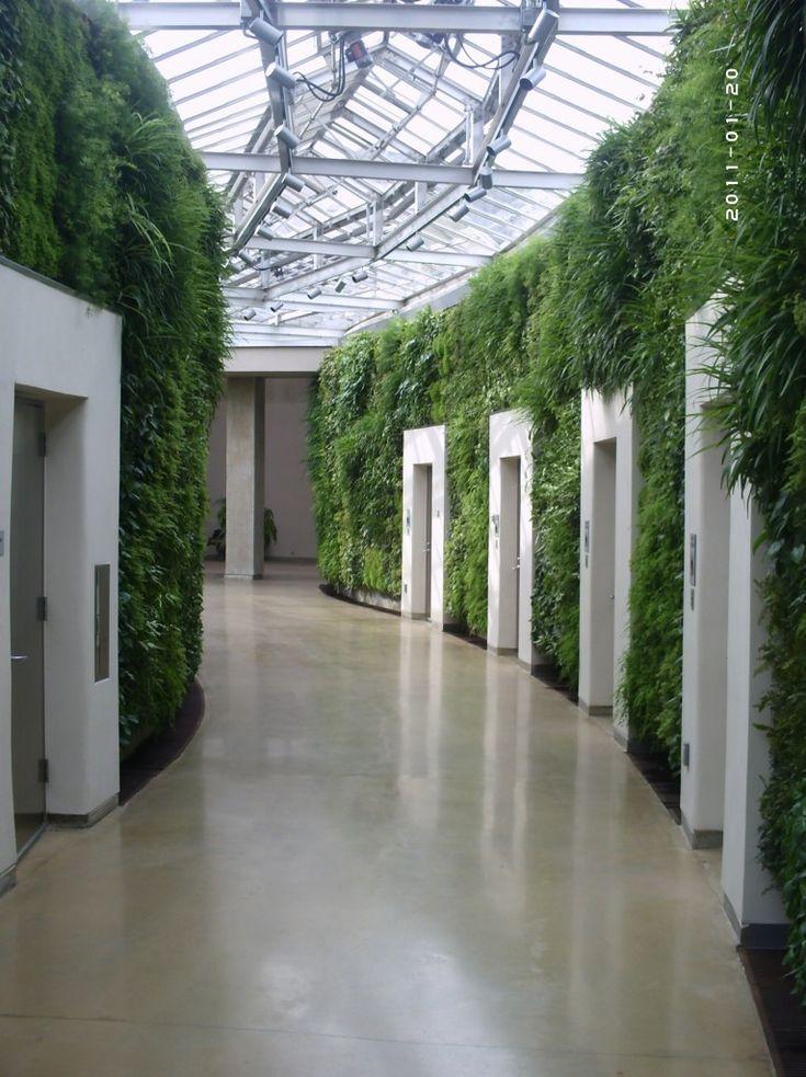 Photo Gallery: Longwood Gardens Green Wall