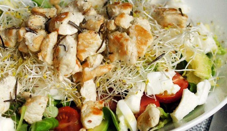 Super lekker: Salade met rozemarijnkip, avocado, alfalfa, mozzarella, tomaat en olijfolie