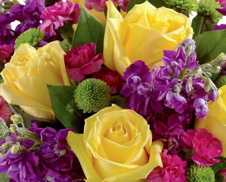 Bright and cheery flowers same day delivery - 17 Best Images About Happy Birthday Flowers Delivery On