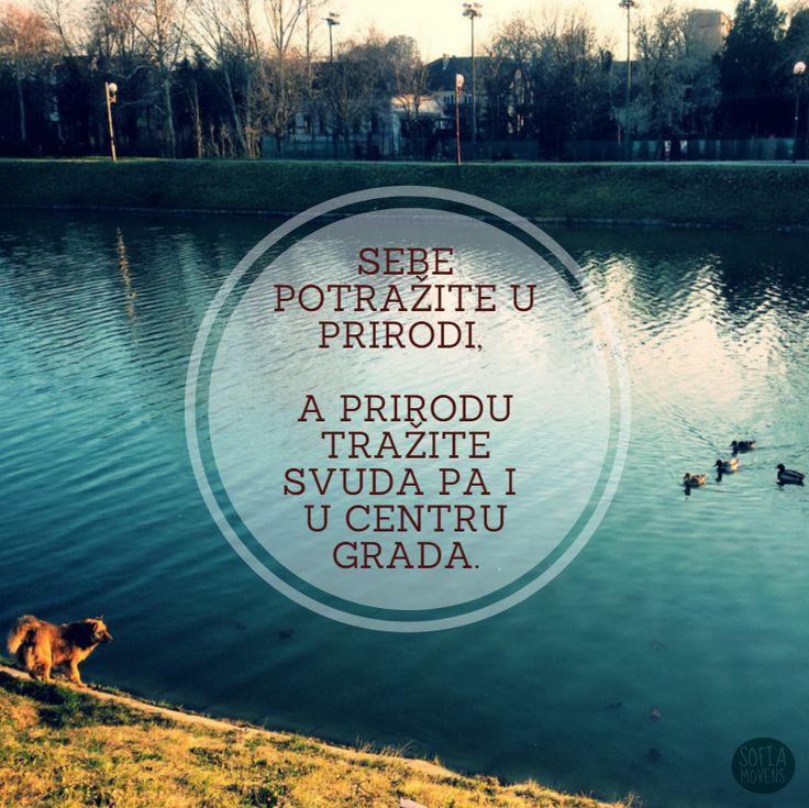 Priruda