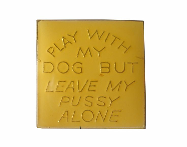 PLAY With My DOG But Leave My PUSSY Alone vintage lapel pin inappropriate joke nsfw mature by VintageTrafficUSA on Etsy https://www.etsy.com/listing/262858603/play-with-my-dog-but-leave-my-pussy