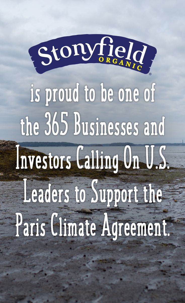 More than 365 businesses and investors, from more than a dozen Fortune 500 firms to small, family-owned businesses across more than 35 states, sent a strong message today to President Barack Obama, President-elect Donald Trump, and other elected U.S. and global leaders, reaffirming their support for the historic Paris Climate Agreement and the need to accelerate the transition to a low-carbon economy at home and around the world…