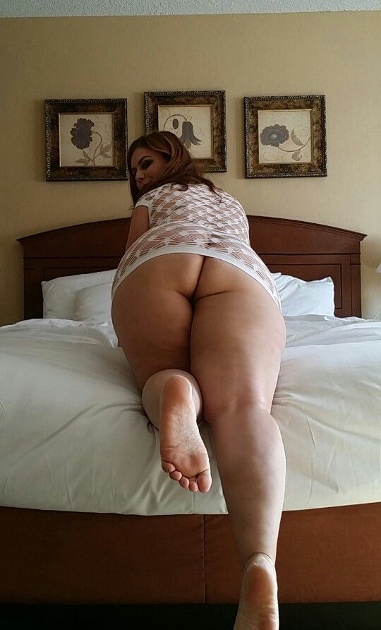 Thick bitches rule pawg ass worship
