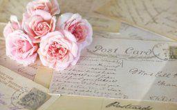 roses flower pink vintage cards a letter