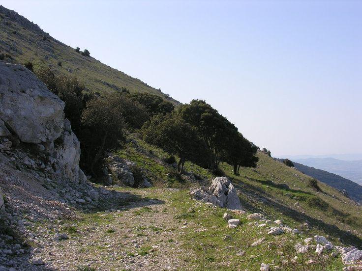 On Montagna Longa, North-West side