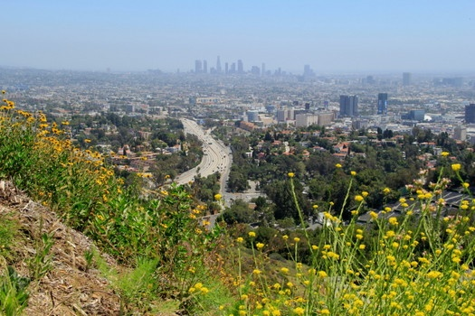 Mulholland Drive. Panoramic views of downtown LA at the Hollywood Bowl Overlook.