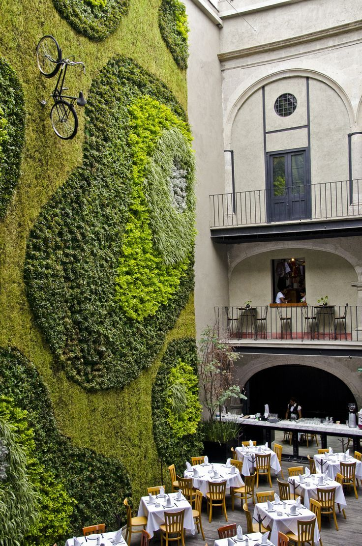 vertical garden at the Restaurant Padrinos in Mexico City
