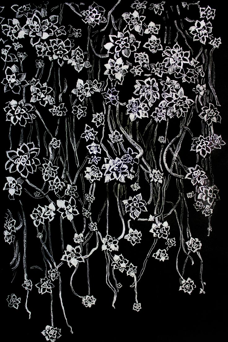 https://society6.com/product/graphic-art-white-ink-and-black-cardboard-flowers_phone-skin#s6-6927578p13a3v600