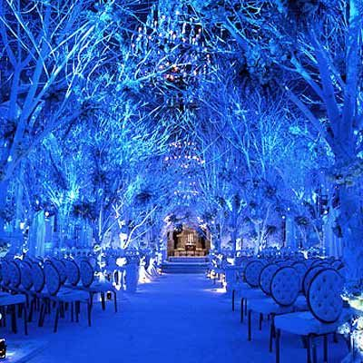 Ice Blue Wedding Theme | friday fabulosity! wedding trees…