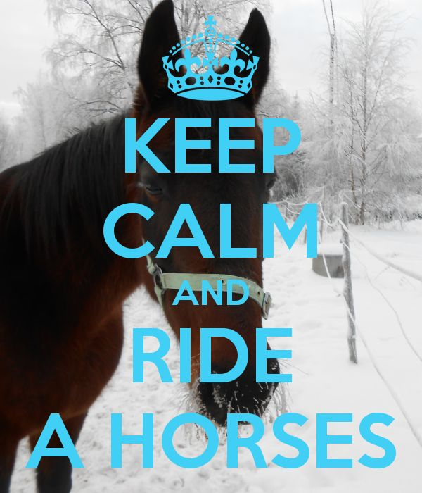 Mikina keep calm and love horses dating. middle eastern men and black women dating.