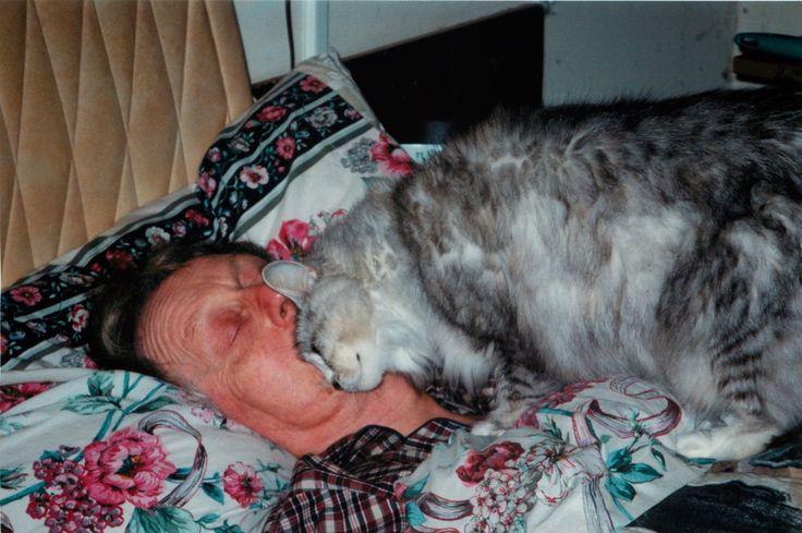 Tabitha waking Dad up.