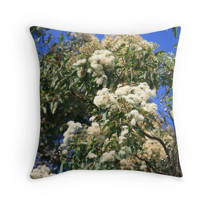Gums in Bloom. Photography by Robyn J Blackford aka aussiebushstick via Redbubble throw-pillows.