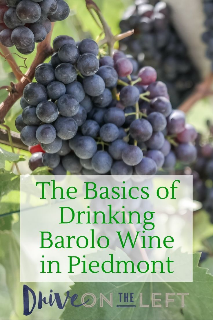 The basics behind Barolo wine, why it's expensive, and how to sample it during a visit to the Piedmont region of Italy.