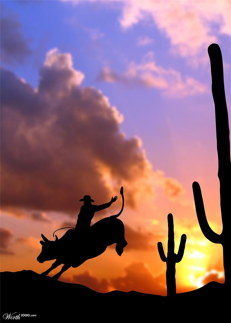 Yes! This is a #1 thing i want to do before i die!!! Bull Riding