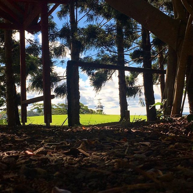 Wedding Ideas Queensland: 25+ Best Unique Proposal Ideas On Pinterest