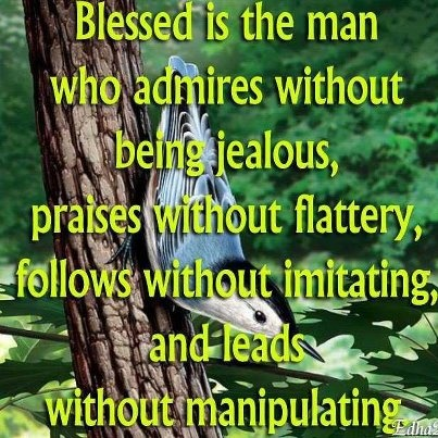 Blessed is the man who admire....  #quotes
