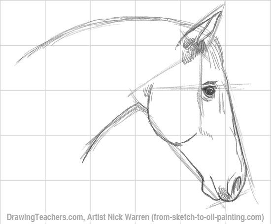 Simple Pencil Horse Drawings   Pictures Of Drawing Sketch