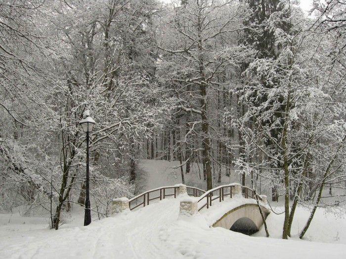 Зима фото. Галерея красивых фото