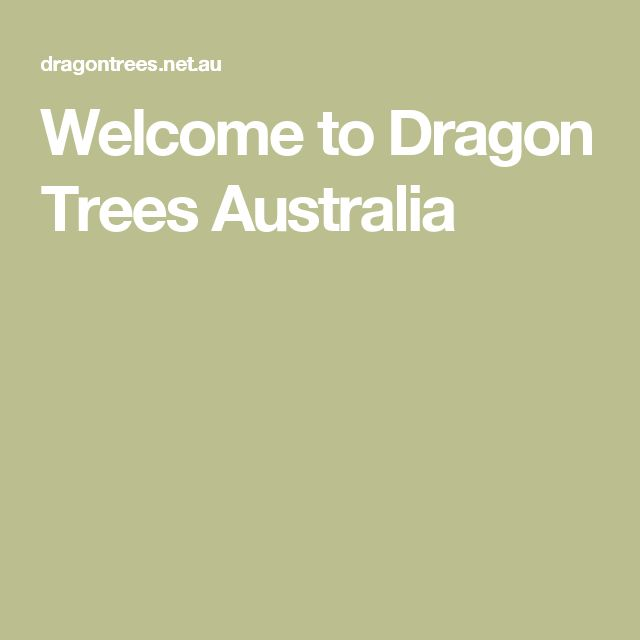 Welcome to Dragon Trees Australia