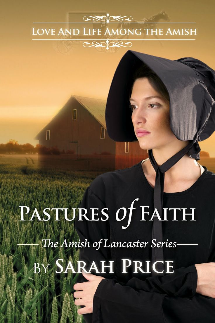 45 best christian mystery romance images on pinterest books to best selling author of amish christian romances sarah price introduces readers to the world fandeluxe Choice Image