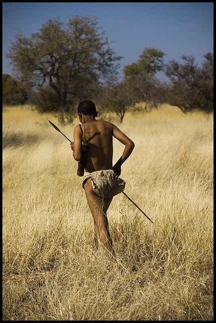 San hunter in the Kalahari