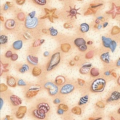conchas do mar   conchas do mar para decoupage fundo do mar conchas para decoupage ...