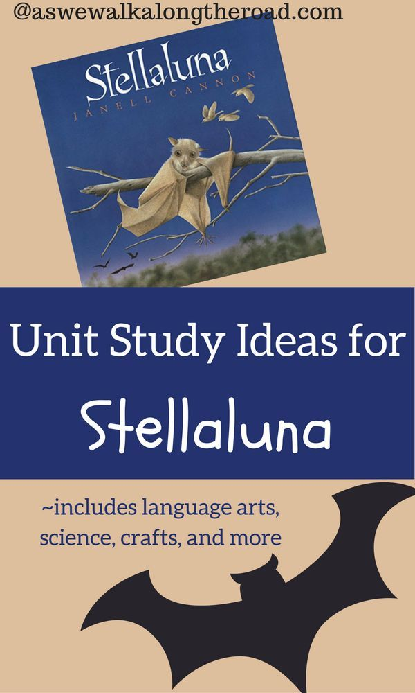 Unit Study Ideas For Stellaluna By Janell Cannon Fun