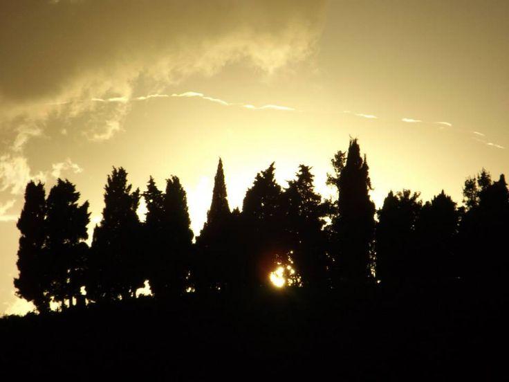 37  COLLINE DI PORTO POTENZA PICENA -MACERATA-MARCHE (foto di GIUSEPPE CARAMIA — a Porto Potenza Picena, Marche.