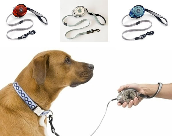Best Collars For Multiple Dogs That Like To Play
