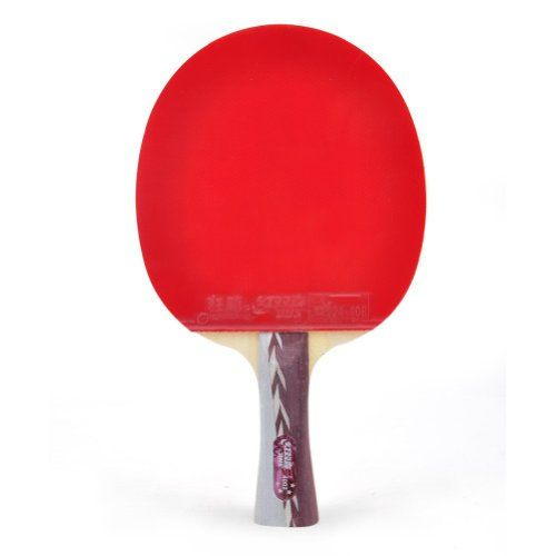 Best Table Tennis Paddle for 2017 | Buyer Guide & In Depth Reviews