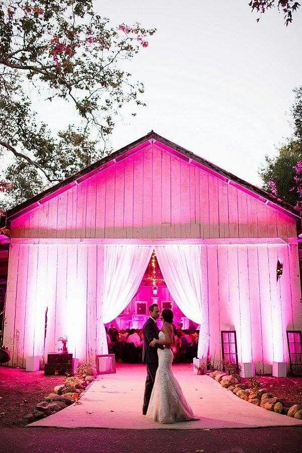 Pink uplighting!